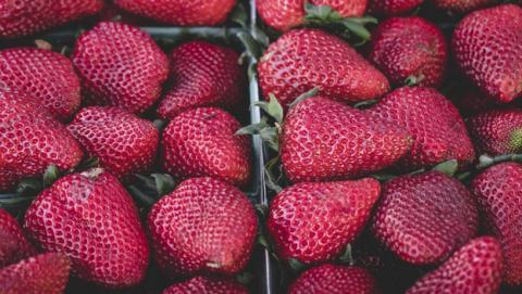 fresas cancer mama