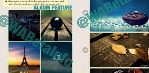 álbumes fotos whatsapp