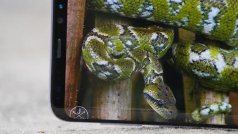 En el Samsung Galaxy S8+, hasta las esquinas están redondeadas