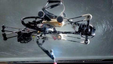 El robot avestruz: pionero en movimientos no computarizados
