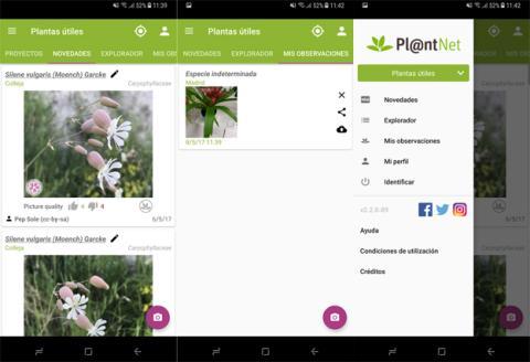 La aplicación de PlantNet