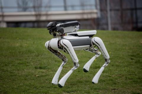 Google se deshace de sus compañías de robótica.