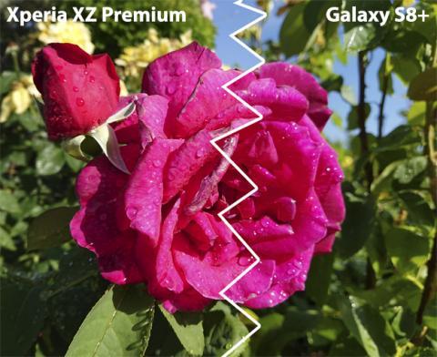 Foto del Xperia XZ Premium vs S8+