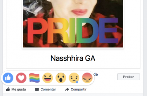 Orgullo Gay Facebook