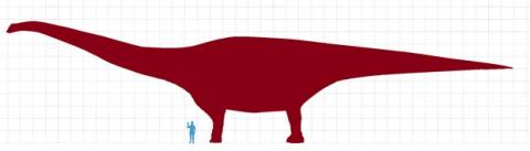 Patagotitan Mayorum, así es el dinosaurio más grande del mundo
