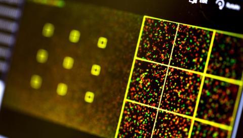 Biológos infectan un ordenador con un programa malicioso insertado en ADN