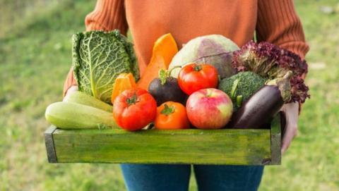 Vegano o Vegetariano: qué es, diferencias y tipos
