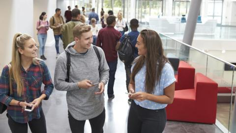 ¿Qué carrera o grado estudiar dentro de la oferta disponible?