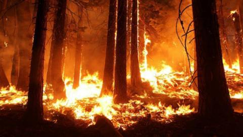 Las consecuencias del cambio climático se harán peores dentro de poco.
