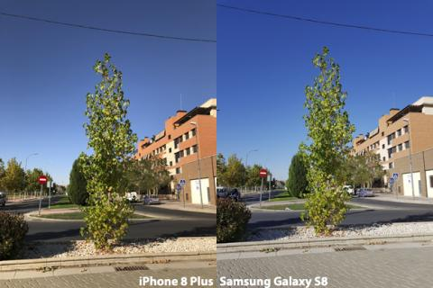 Cámara del iPhone 8 Plus vs Galaxy S8 (1)