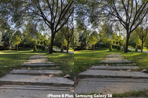 Cámara del iPhone 8 Plus vs Galaxy S8 (2)