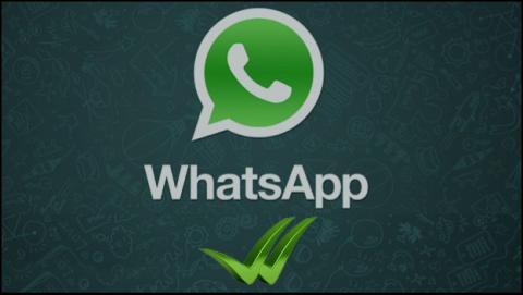 Verificar negocios actualización WhatsApp Android