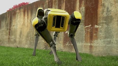 perro robot spotmini boston dinamics