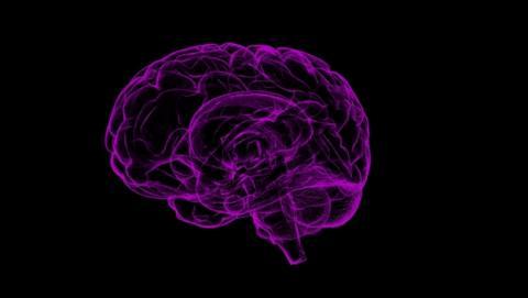 Un chip que podría prevenir enfermedades neuronales como el Alzheimer