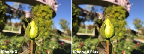 Comparativa de la cámara del iPhone X (3)