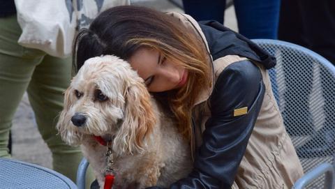 ¿Es bueno abrazar a tu perro?