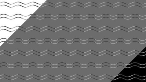 La mejor ilusión óptica para engañar a tu cerebro.