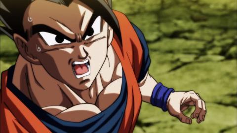 Aliados Goku Dragon Ball Super