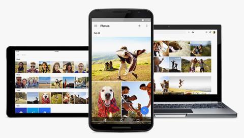 Tras la polémica, para Google Photos los gorilas ya no existen
