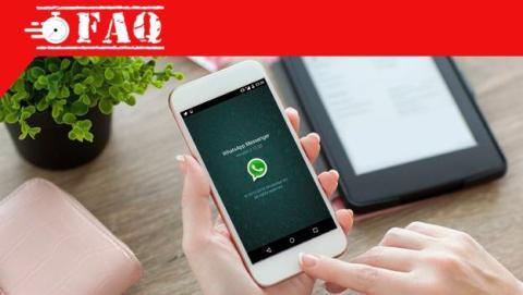 Comprobar qué versión de WhatsApp tengo.
