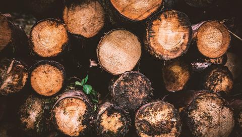 madera dura acero