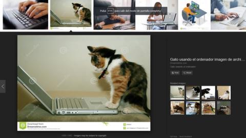 Google quita el botón ver imágenes en el buscador, para que no las robes