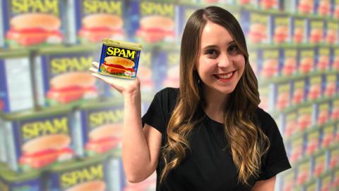 que es spam