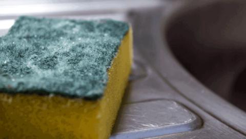Limpiar estropajos cocina