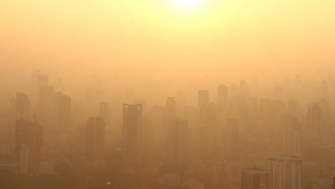 La contaminación reduce la productividad.
