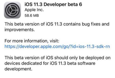 beta ios 11.3