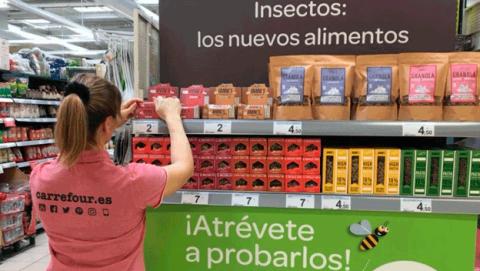 Dónde comprar para comer insectos en España