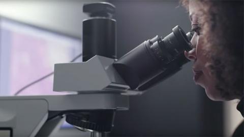 microscopio realidad aumentada google