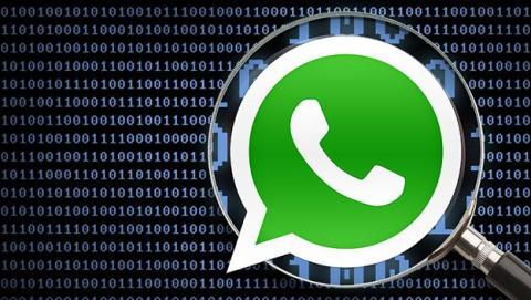Cómo descargar el informe de datos de WhatsApp