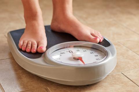 Bascula dieta perder peso adelgazar