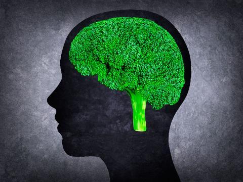Comida cerebro