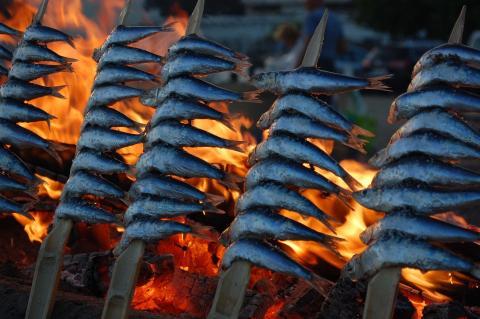 Pescado sardina comida