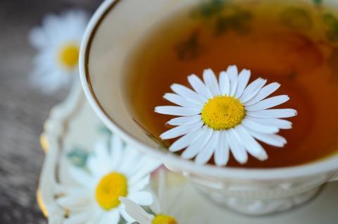 Te manzanilla, bebida recomendada para adelgazar