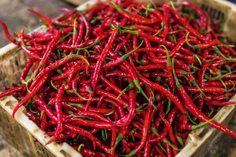 Pastillas para adelgazar efectivas chile