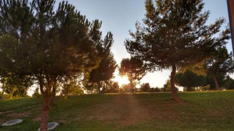Fotografías realizadas con la cámara del Moto Z3 Play