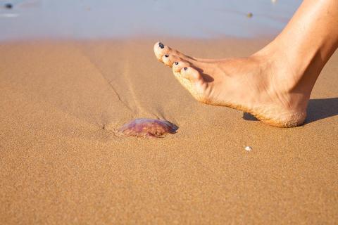 peligro playa