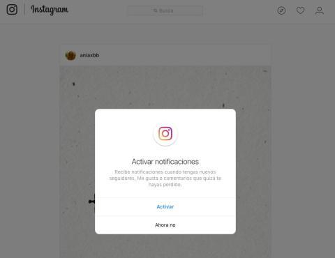 activar notificaciones instagram web