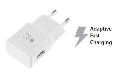 Adaptative Fast Charging