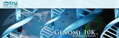 Proyecto Genome 10K