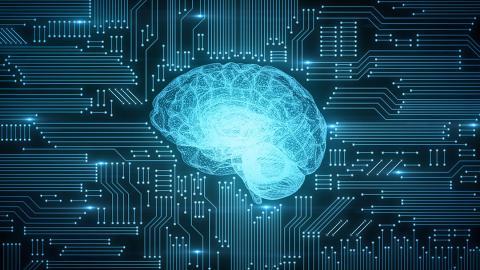 cerebro ordenador