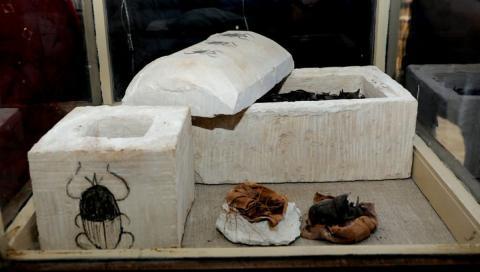 Momias escarabajo