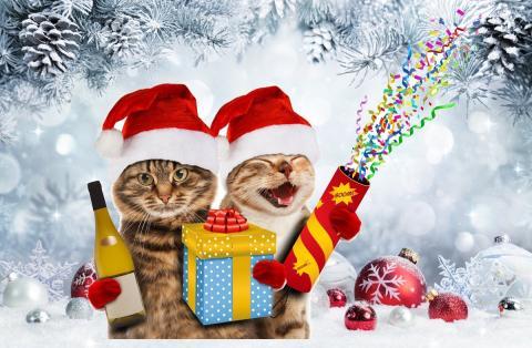 Frases Para Felecitar La Navidad.45 Imagenes Y Frases Con Las Que Felicitar La Navidad A Tus