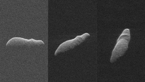 Asteroide  hipopotamo