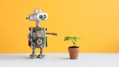 Inteligencia artificial en la cadena alimenticia: del campo a tu Instagram