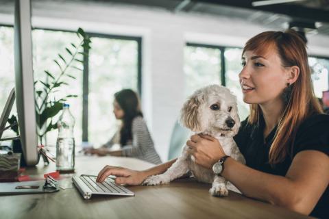 Una mujer con su perro en el trabajo