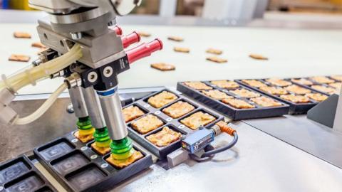 Catador de alimentos robot